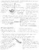 Roaring 20's and Great Depression Infographic