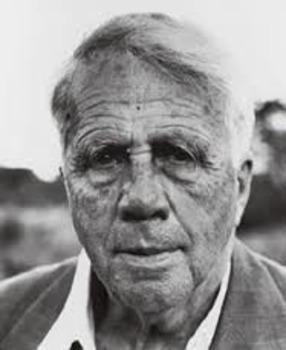 Robert Frost Worksheets and Quiz