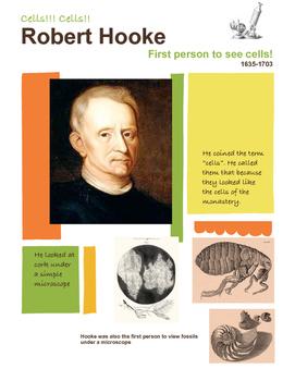 Robert Hooke Poster
