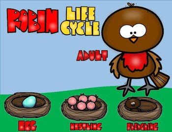 Robin Life Cycle Double Digit Addtion NO Regrouping Math CRAFT
