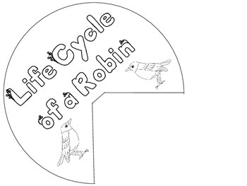 Robin Life Cycle Wheel and Teaching Cards