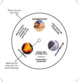 Rock Cycle - Wheel Model
