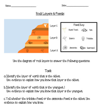 Rock Layer Ages & Fossils *FREEBIE*