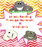 Rock Strata Reading Passage, Questions & Word Cards