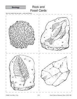 Rock and Fossil Cards