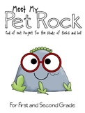 Rock and Soil Day - Meet My Pet Rock Project