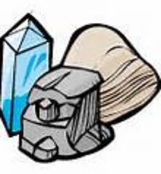 Rocks, Minerals, & Plants