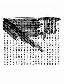 Rocks Wordsearch with Key