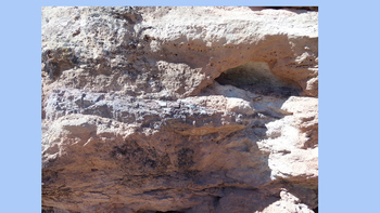 Rocks and Fossils of Moab