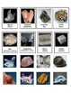 Rocks and Minerals:  Silicate and Non-Silicate Minerals (COLORFUL!)
