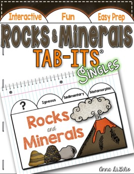 Rocks and Minerals Tab-Its®