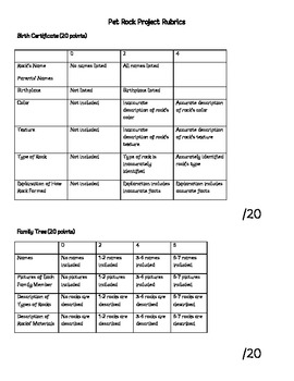 Rocks and Minerals Unit Project Investigation Experiment Test Vocabulary Journal