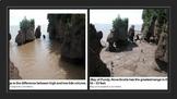 Marine Rocky Coasts - Ocean Unit 10 Bundled