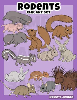 Rodents Clip Art Set