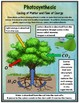 Role of Photosynthesis in Cycling of Matter and Flow of Energy: NGS MS-LS1-6