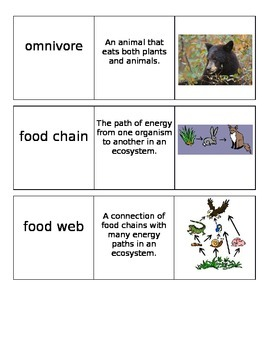 Roles of Living Things Vocabulary Cards