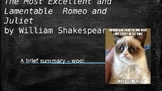 Romeo and Juliet Introduction PPT