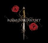 Romeo and Juliet Literature Circles