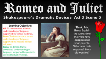 Romeo and Juliet: Shakespeare's Dramatic Devices!
