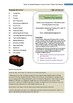 Romulus my Father- Gaita Teacher Text Guides & Worksheets