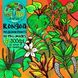 Rongoa Maori Medicinal Plant Clip Art