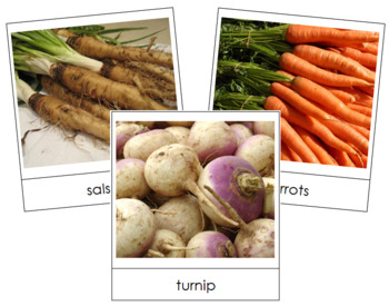 Root Vegetable Picture Cards