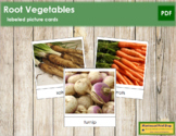 Types of Root Vegetables - Picture Cards - Vocabulary, ESL
