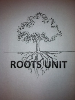 Root Word Unit - Over 80 roots with quizzes and test