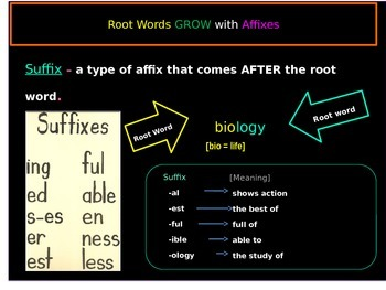 Root Words, Affixes, and Suffixes