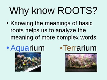 Greek & Latin Roots- Aqua/Terr