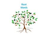 Root Words Practice Activity