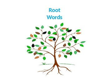 Root Words Practice Activity