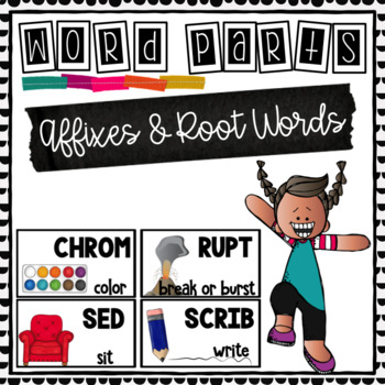 Root Words and Affixes- Word Study