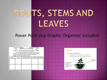 Roots, Stems Leaves PowerPoint Plus Graphic Organizer