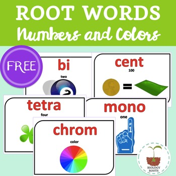 Roots Words- Posters & Word Wall  {numbers and colors}