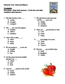 Rosa and Blanca Vocabulary Match Up and Selection Test Reading Street