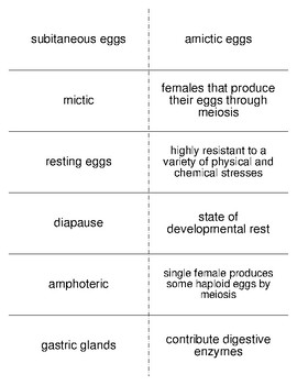 Rotifers Vocabulary Flash Cards for Invertebrate Biology