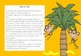 Rotten Bananas: A Sight Word Game for Cheeky Monkeys - Dolch First Grade