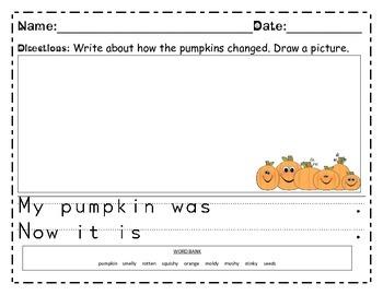 Rotting Pumpkin Experiment Journal for Observation