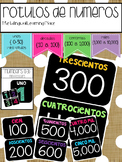 Rotulos de Numeros 0-10,000 {spanish number posters}