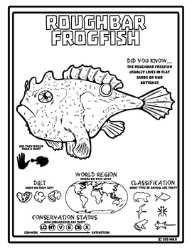 Roughbar Frogfish -- 10 Resources -- Coloring Pages, Reading & Activities