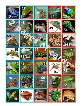 Rounding with Reptiles (and other creepy crawly critters)