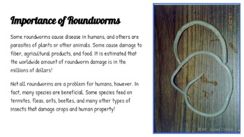 Roundworms & Flatworms: A Life Sciences Slideshow!