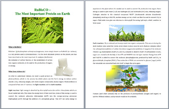 RuBisCO - Earth's Most Important Protein - Science Reading Article