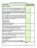 Rubric - Writing Your Own Constitution