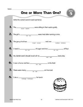 Rule 5: Singular & Plural Nouns