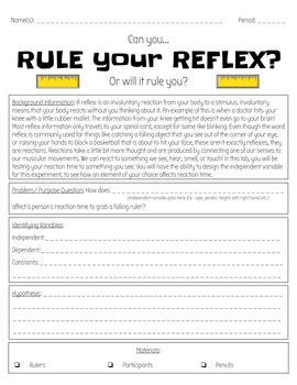 Rule Your Reflex - Scientific Method Ruler and Reaction Inquiry Lab
