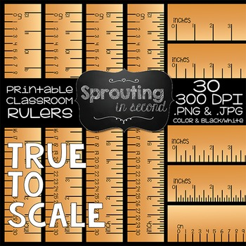 Ruler Clipart {Inches & Centimeters}