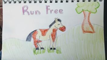Run Free Horse Drawing