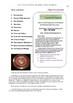 Run Lola Run film- Teacher Text Guides & Worksheets